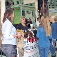 "Moscow International fair ""Education and Career"": Higher education in Russia. Photo 1."